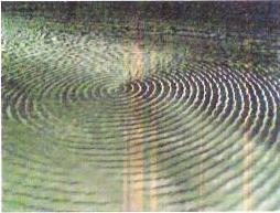 Círculos na Fonte da Telha